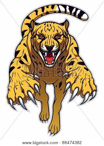 Jumping Cheetah