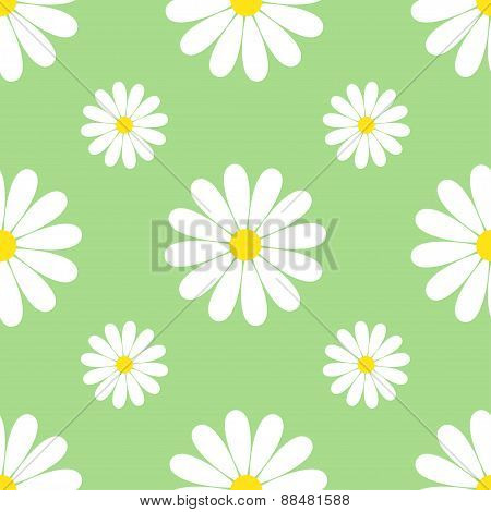 Green Background Seamless Pattern With Chamomiles