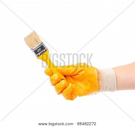 Hand in glove holds brush.