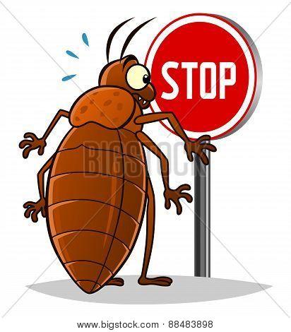 Stop Bedbugs
