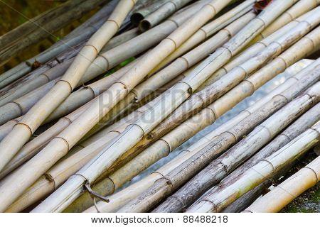 Pile Of Cut Bamboo