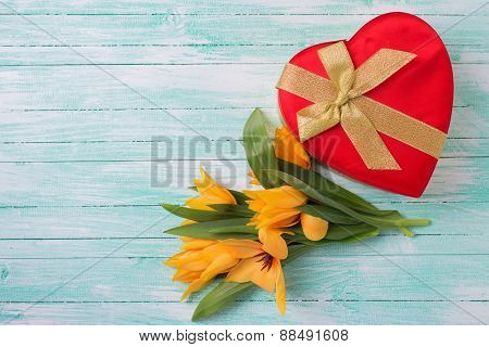Background With Fresh Tulips And Gift Box