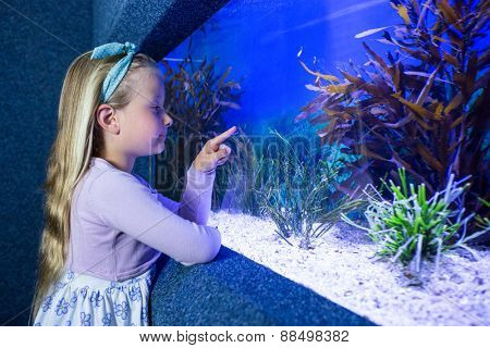 Young woman pointing fish in tank at the aquarium