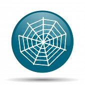pic of spider web  - spider web blue glossy web icon  - JPG
