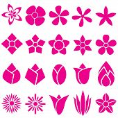 stock photo of organist  - Many Vector Flowers icon - JPG