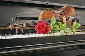 stock photo of red siding  - Composition piano keyboard red rose and violin