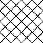 image of thorns  - thorn wire mesh pattern or forbidden area - JPG