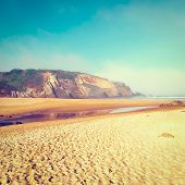 pic of atlantic ocean beach  - Gulls Sitting on the Beach of the Atlantic Ocean in the Morning Mist Portugal Instagram Effectl - JPG
