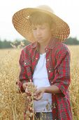 pic of oats  - Portrait of teenage ranch boy is holding ripe oat seeds with outer shells in cupped palms with sun flare - JPG