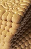 picture of biscuits  - Biscuit Texture Closeup Details  - JPG
