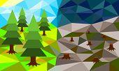 image of deforestation  - Forest before and after deforestation - JPG