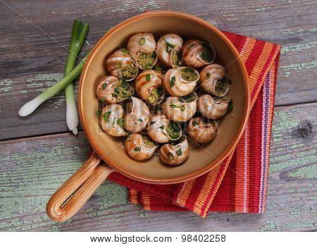 Snail Au Gratin