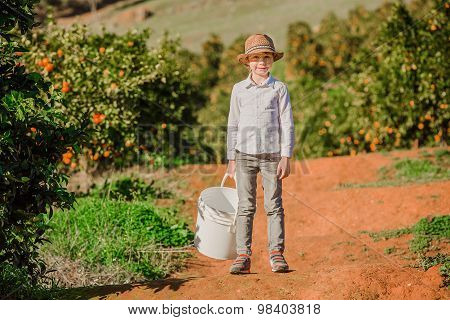 Smiling healthy boy on citrus farm holding bucket ready to pick oranges, mandarins and lemons