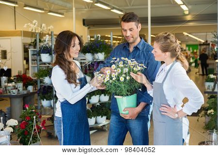 Female florists assisting male customer in buying flower plants at store