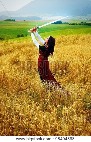 Young woman with ornamental dress and sword in hand  standing on a wheat field with sunset. Natural