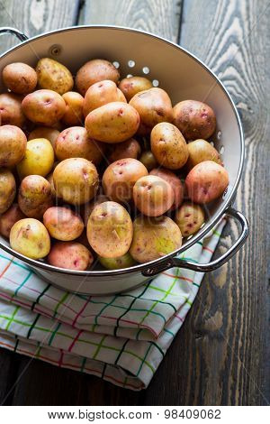 Harvest potatoes in colander on wooden rustic background
