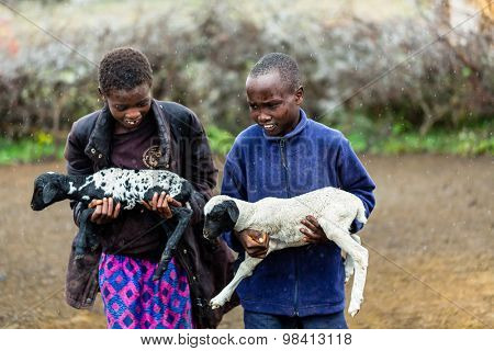 Massai children carrying goats in the rain