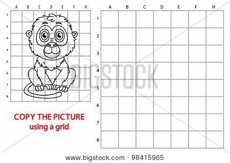 Grid copy tamarin