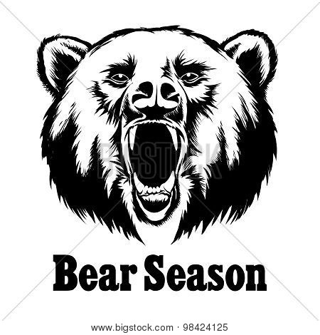 Hand drawn vector roaring bear. T-shirt design