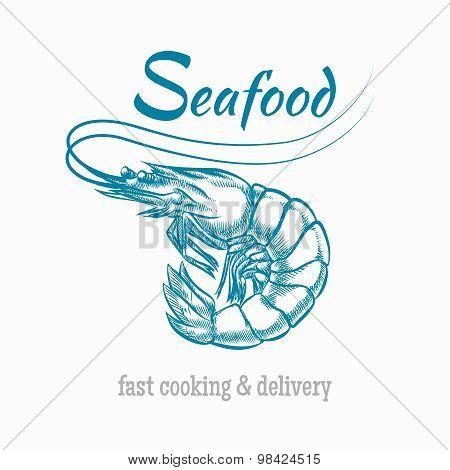 Vector sketch shrimp seafood logo