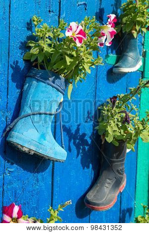 Old Rubber Boots With Blooming Flowers