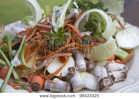 Plate Of Vegetable Scraps