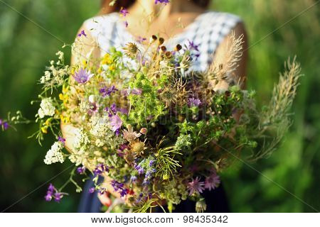 Female hands with bouquet of wildflowers over reeds background