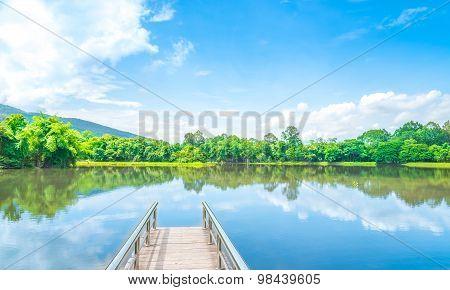 The Way To Lake