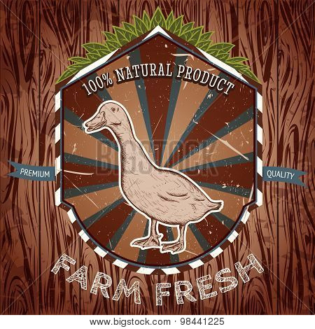 organic farm fresh. Vintage label with duck. Hand drawn vector illustration poster in sketch style