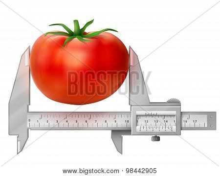 Horizontal Caliper Measures Tomato Fruit