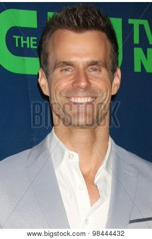 LOS ANGELES - AUG 10:  Cameron Mathison at the CBS TCA Summer 2015 Party at the Pacific Design Center on August 10, 2015 in West Hollywood, CA
