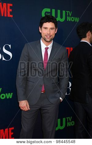 LOS ANGELES - AUG 10:  Benjamin Hollingsworth at the CBS TCA Summer 2015 Party at the Pacific Design Center on August 10, 2015 in West Hollywood, CA