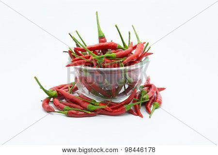 Red hot chilli in a glass cup