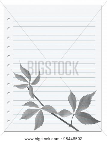 Exercise Book With Black-white Virginia Creeper Leaf