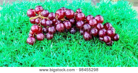 Grapes On Artificial Turf