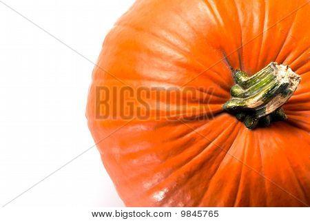 Pumpkin Copy Space V3
