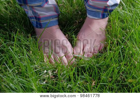 Feet in grass. Barefoot summer pleasure