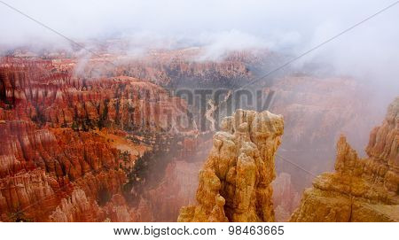 Foggy Morning at Bryce Canyon National Park