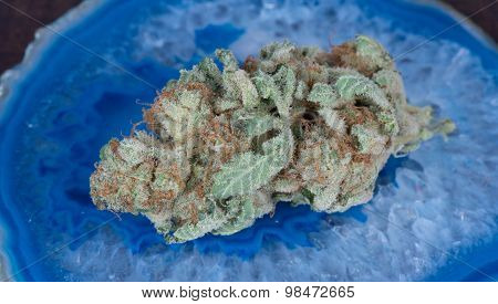 Blueberry Diesel Hybrid Medical Marijuana