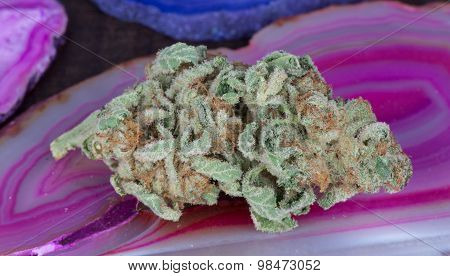 Blueberry Diesel Marijuana