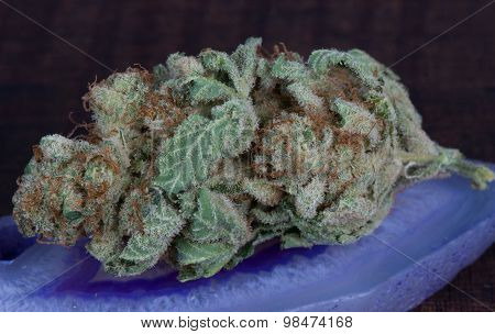 Marijuana strain blueberry diesel
