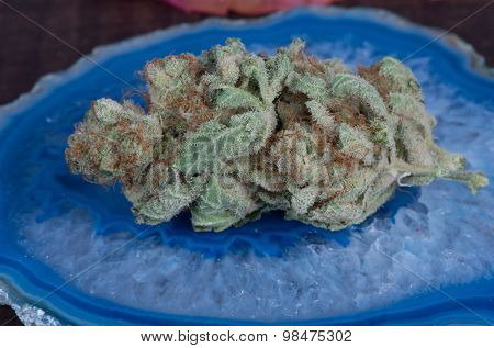 Medical Marijuana Blueberry Diesel