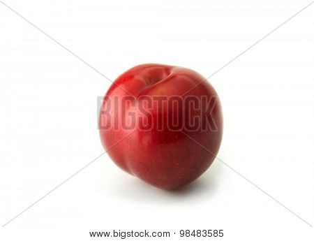 Very ripe fresh harvested plum, isolated on white. Shiny red plum on white surface.