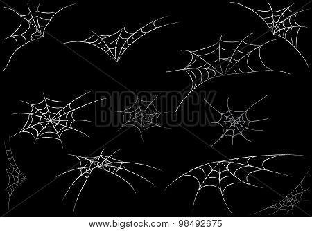 Spider Web Monochrome. Vector Illustration.