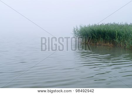 Morning Mist Over Lake With Sedge Thicket, Mysterious Background