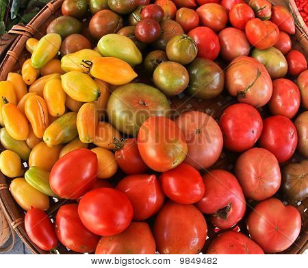 Tomatoes and Peppers at Market