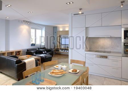 Kitchen and livingroom in modern apartment