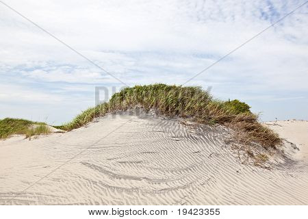 Dune With Grass At The Sandy Beach