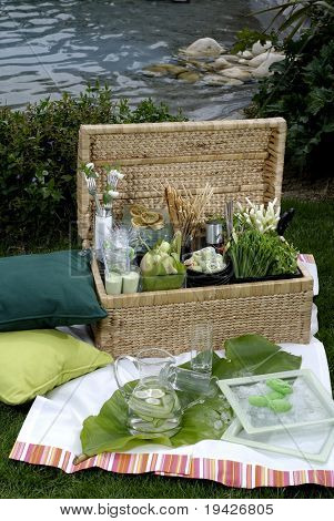 luxurious picnic basket