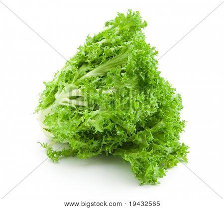 Salad lettuce isolated on white